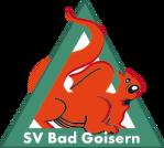 SV Kieninger-Bau Bad Goisern